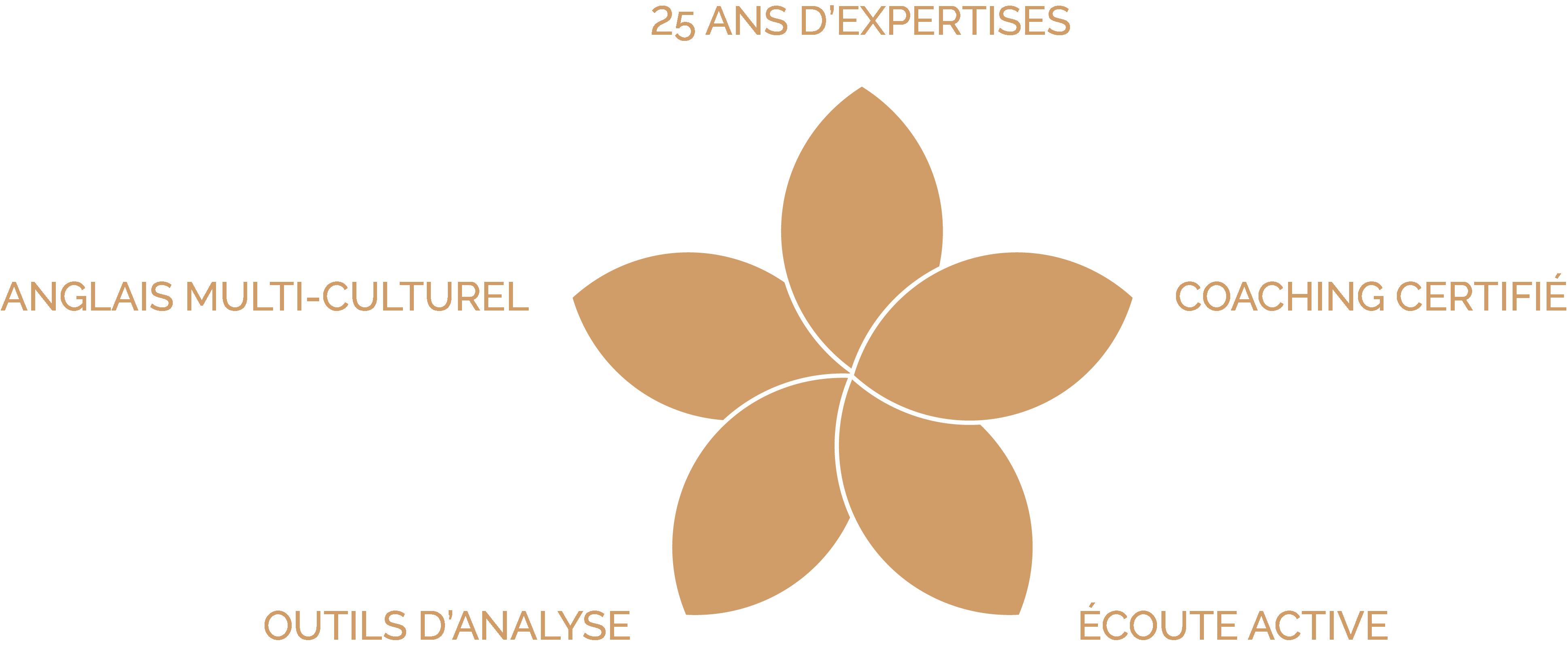 Fleur site Français - ressources