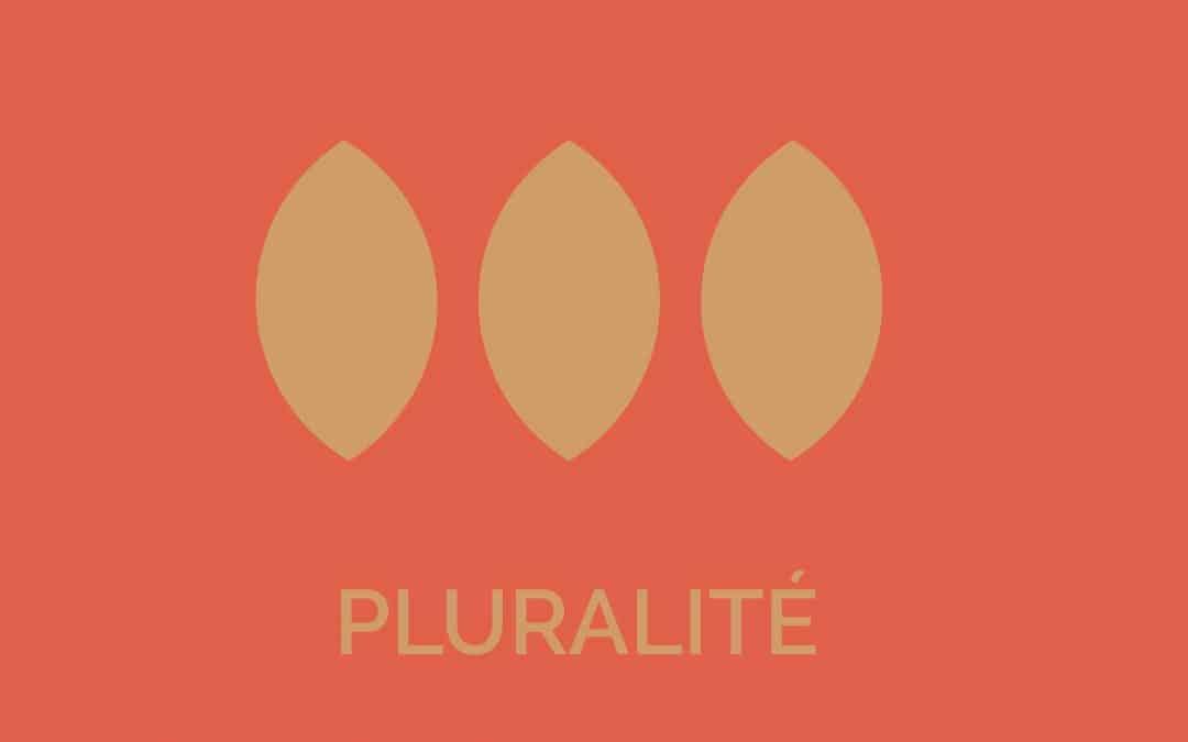 Les valeurs de Blooming Stone – La pluralité